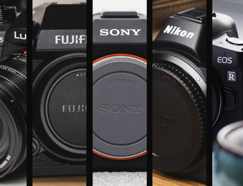 The greatest DSLR cameras you can find in 2019